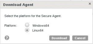Select Linux Agent for this set up