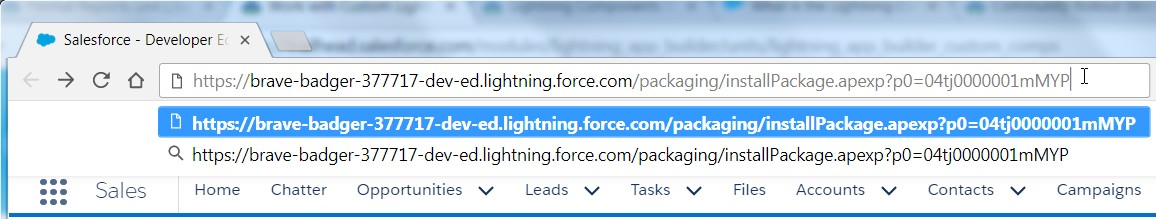 With the package path in your clipboard, paste it after the domain name of your Playground in the window you have already logged into and press enter.
